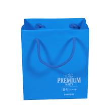 Luxury Shopping Bag Custom Art/Kraft Paper Shopping Bag/Paper Bag for Clothing