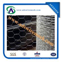 ISO9001: 2008 Hexagonal Wire Mesh (ADS-HWM-10)