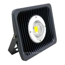 Proyector 30W LED con lente 30 °
