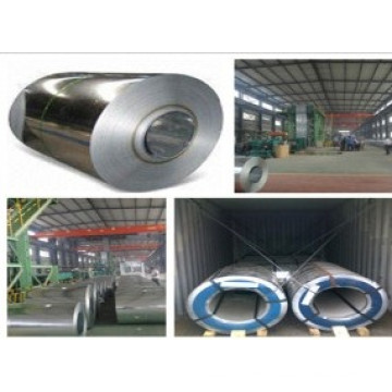 0.25mm Thickness Hot Dipped Galvanized Steel Coil (ASTM A653 DX51D)