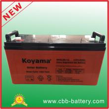 Batterie Solar aus Rastersystem für Hausgebrauch, Sonnenkollektor und Solarbatterie Nps120-12