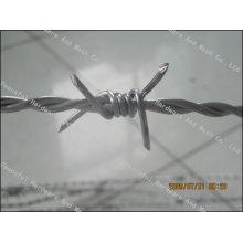 Electric Galvanized Barbed Wire (hpwj-1003)