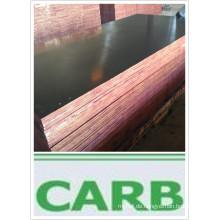 Fingergelenk Sperrholz für Schalung Pappel Core First Grade (HBR016)