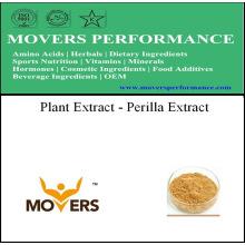 Bon extrait de plante de haute qualité de prix - extrait de Perilla