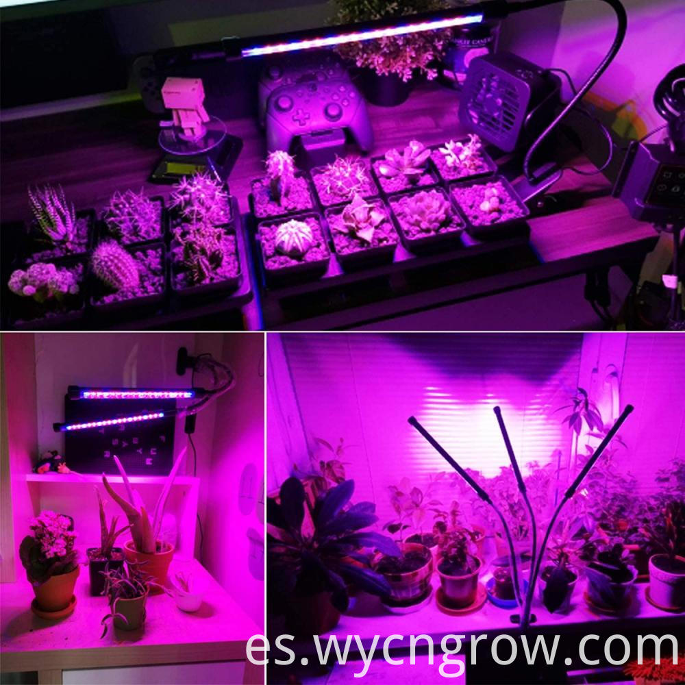 clamp-on led grow light fixture