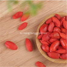 프리즈 기술 Goji Berry Fruit