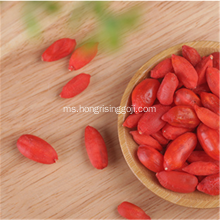 Teknologi beku Goji Berry Fruit