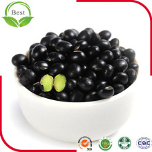 New Crop Chinese Small Black Beans