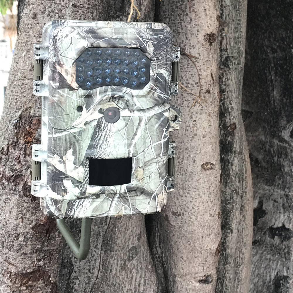 IR Trail Camera