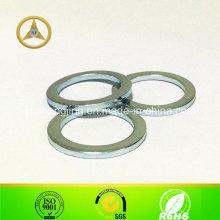 Nicht-Standard Stahl Scheibe
