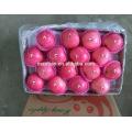 Estilo fresco y cultivo orgánico Tipo de fruta fresca Estilo fresco y cultivo orgánico Tipo de fruta fresca