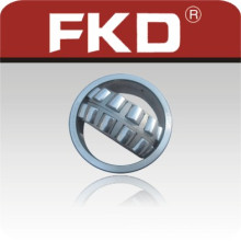 Cylindrical Roller Bearing Fkd