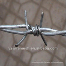 Hot sale barbed wire for South Africa