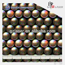Hologramm-Master-Shim-Anbieter mit verschiedenen holographischen Linsenmustern