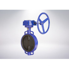 Butterfly Valve for Power and Utilities