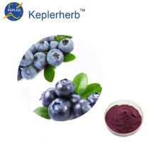 98% Blueberry fruit powder