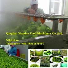 Blanchieren-Maschinen-Gemüse Blancher-Meerespflanze-Blanchieren-Maschine