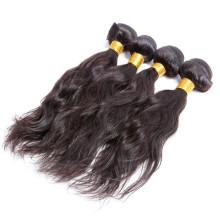 5a 1b Farbe unverarbeitete natürliche Welle Doppelschuss reines brasilianisches Haar
