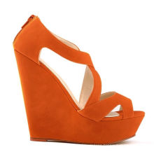 New Style of Fashion High Heel Lady Shoes (A119)