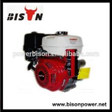 BISON (CHINA) 15HP Motor