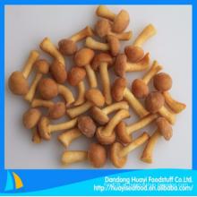 Bom prêmio congelado venda quente nameko cogumelo bom exportador a longo prazo