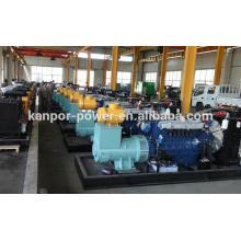 Natural Gas/Biogas Diesel Power Generator Set