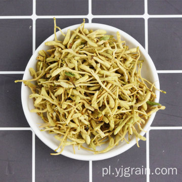 Sprzedaż hurtowa produktów rolniczych Wiciokrzew Herbata ziołowa