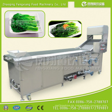 PT-2000 Industrial Vegetable /Seafood Blanching Machine