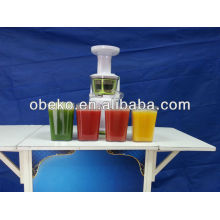 2013 hot sell auger juicer with CE,GS,ROHS