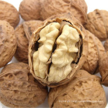 Chinese Top Quality Natural Organic Ecology Walnut