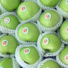 Export Erste grüne Gala Apfel (80/88/100/113/125)