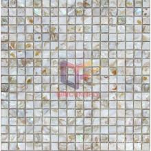 Colorful Natural Shell Mosaic (CFP081)