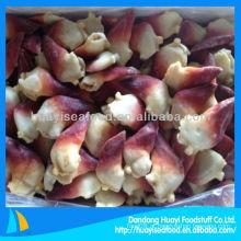 Congelado 21-25pc / kg árctico surf clam