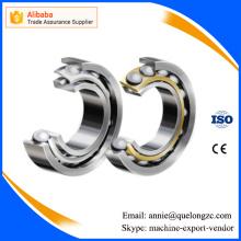 China Factory Supply Large Angular Contact Ball Bearing (7692)
