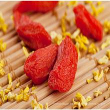 mejores frutas secas secas bayas de goji orgánicas lycium barbarum