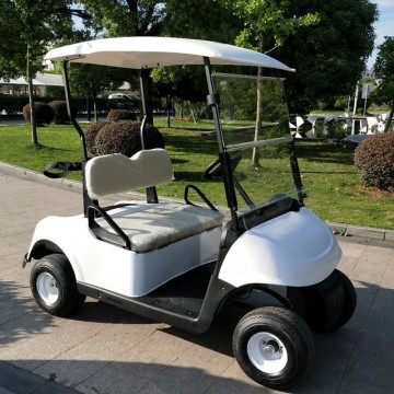 Voiturette de golf 2 places alimentée par batterie au lithium