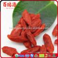 Goji berry powder where can you buy goji berries wolfberry fruit