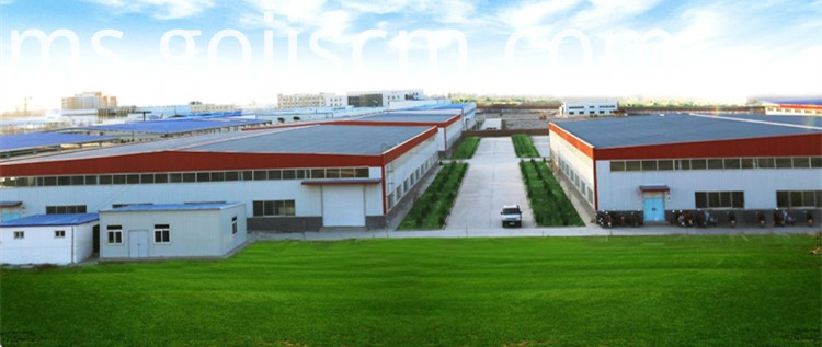 Ningxia Goji Berry factory