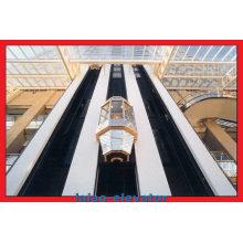 Gearless Motor mit Vvvf Control Panorama Aufzug Aufzug