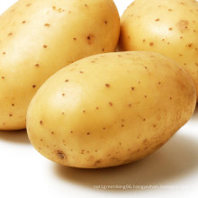 Cheap Price Export Natural High Quality Fresh Sweet Potato In Carton