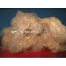 white camel wool fiber