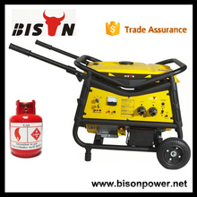BISON China Taizhou 3kva Manufacturing Company 2800watt Biogas Generator Preis