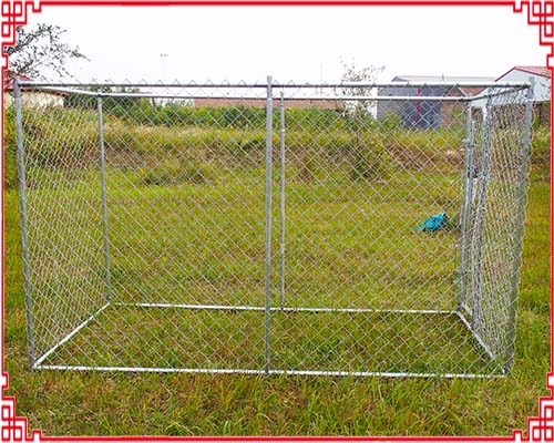 Large Chain link dog kennel