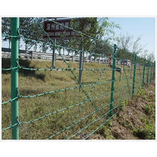 PVC Coated Barbed Wire for Fence (YB-Fence 5)