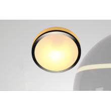 G9 40W Zhongshan Guzhen Glass Metal Panel Lamp for Balcony