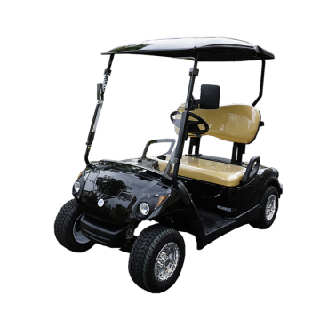 Carrinhos powergolf com bateria de lítio ezgo de 2 assentos