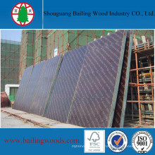 17mm impermeable Film Faced Construction Plywood