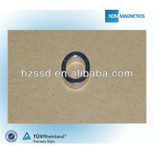 Постоянный размер круга магнита с высокой производительностью Эпоксидное покрытие