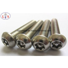 Stainless Steel 304 Bolt/Anti-Theft Bolt/Bolt with High Strength