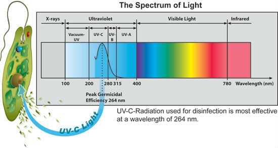 Low-cost UVC disinfection lamp